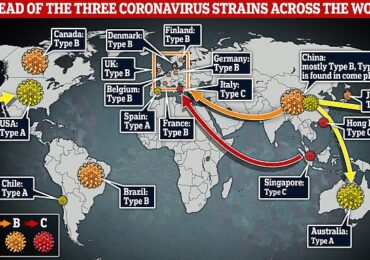 Alimlər iddia edir: dünyada koronavirusun 3 fərqli tipiyayılır və virus mutasiyaya uğrayır